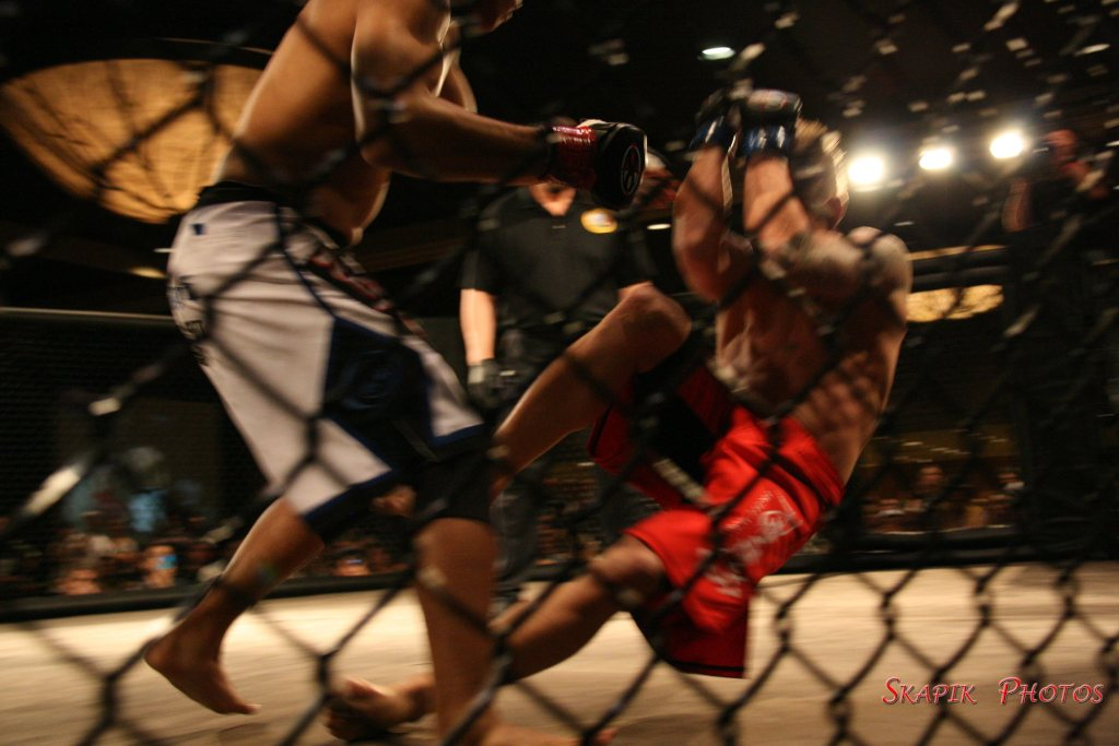 Strippers cage fighting